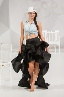 fashion-show-1746610_640.jpg